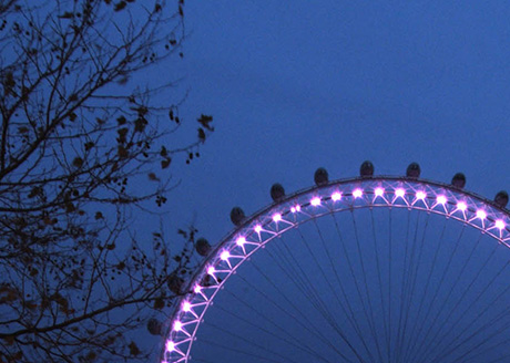 The London Eye. Architect and Designer: Marks Barfield Architects